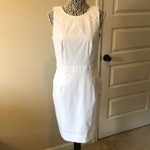 White Pleated Collar Dress
